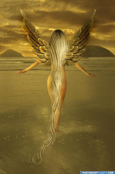 angel-gold1