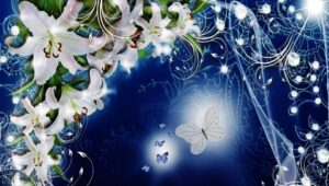 butterfly=flowers-dreams
